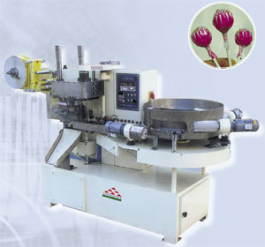 Candy Packing Machine Image